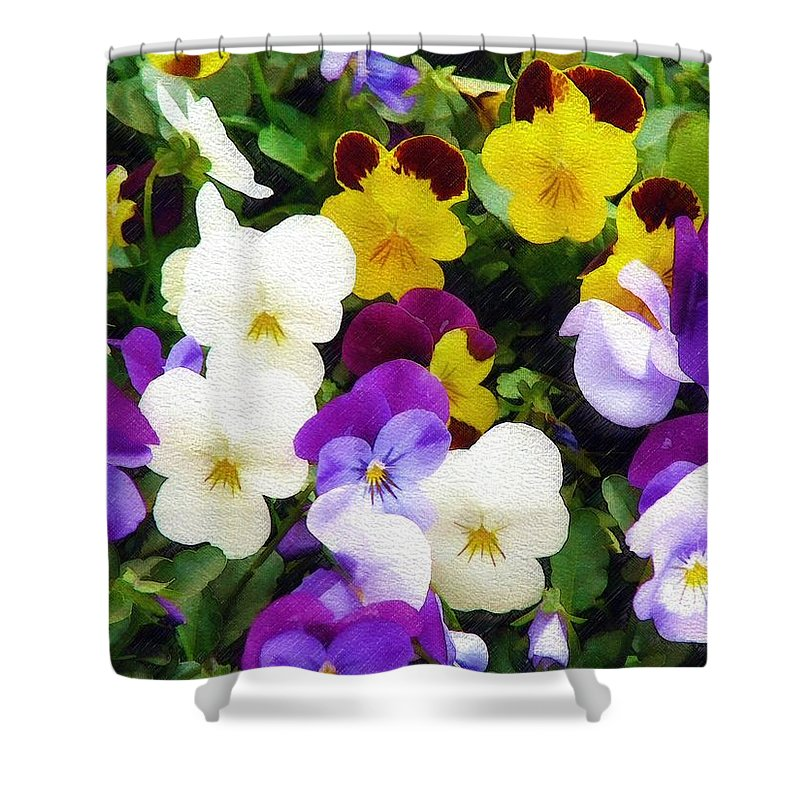 Pansies Shower Curtain featuring the photograph Pansies by Sandy MacGowan