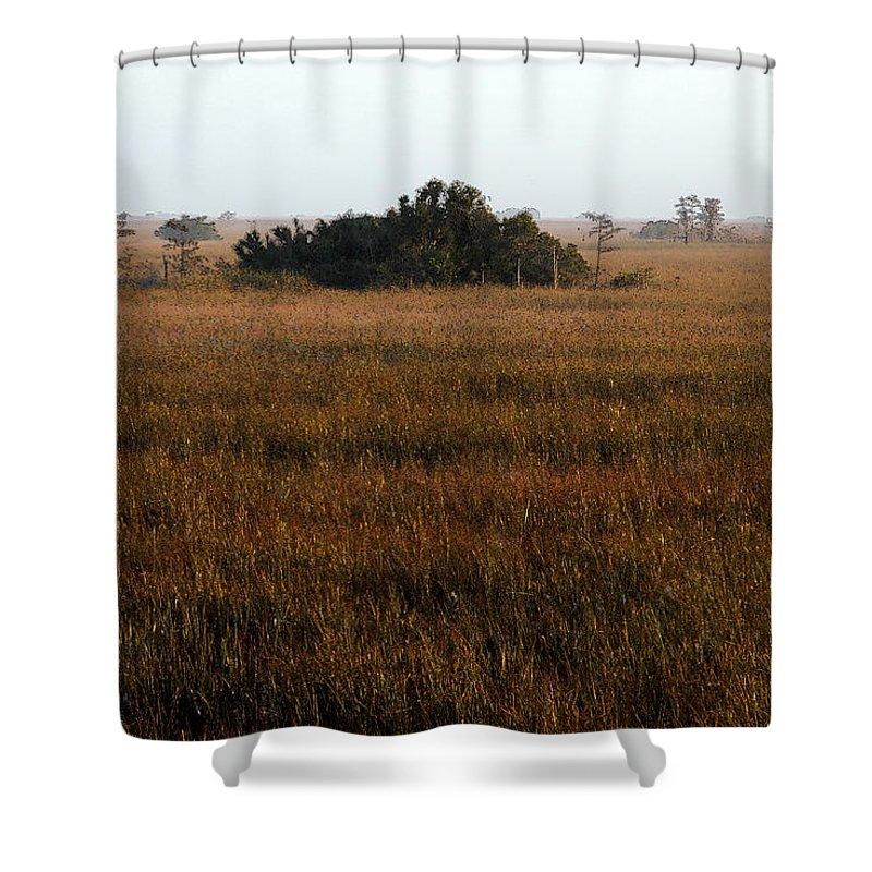Hammock Shower Curtain featuring the painting Papaya Hammock by David Lee Thompson