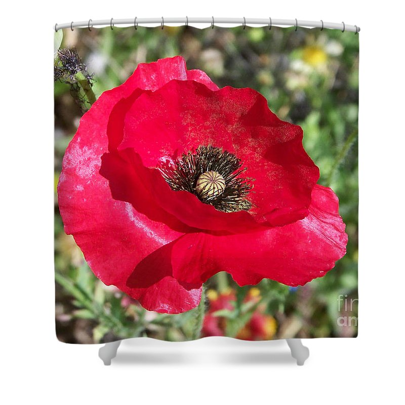 Red Shower Curtain featuring the photograph Paper Flower by Kathy McClure