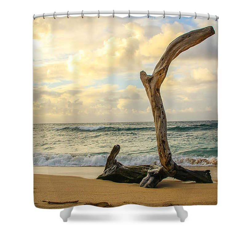 Hawaii Shower Curtain featuring the photograph Paradise by William Sikora