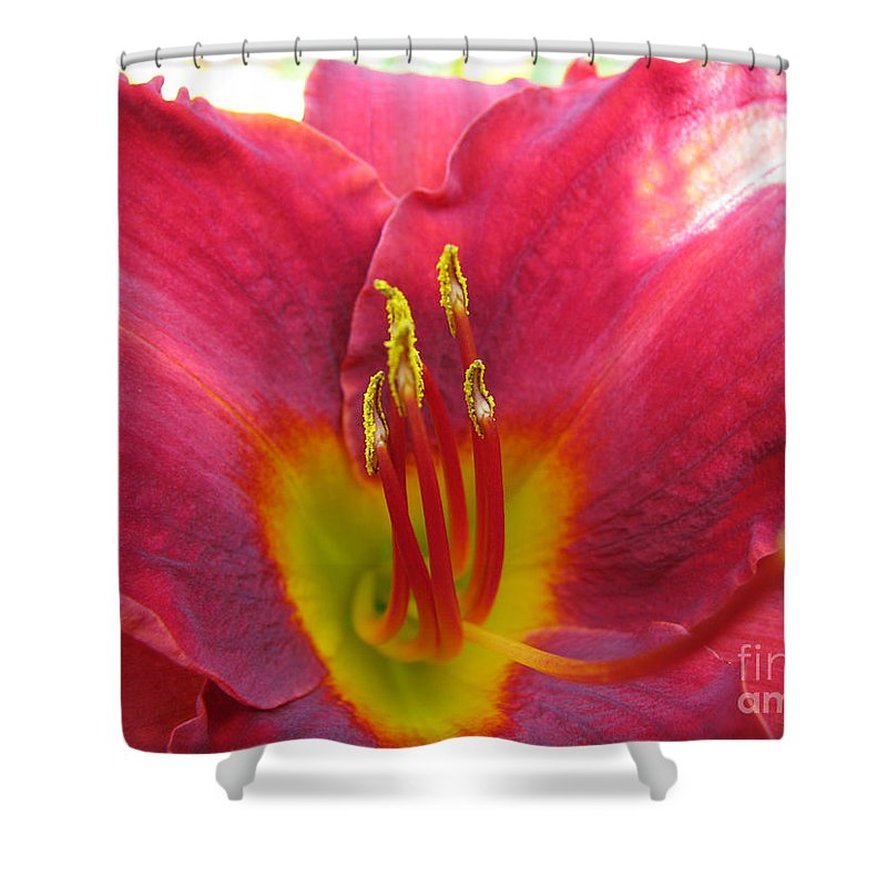 Pardon Me Lilly Shower Curtain featuring the photograph Pardon Me by Amanda Barcon