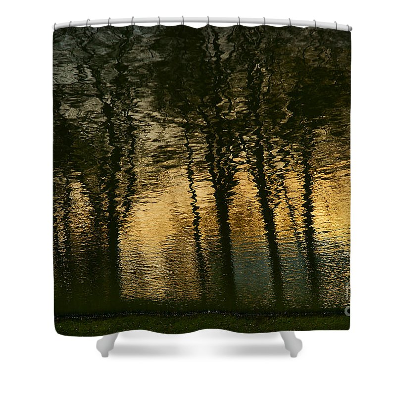 In Park Shower Curtain featuring the photograph In The Park . by Alexander Vinogradov
