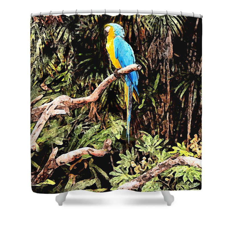 Parrot Shower Curtain featuring the photograph Parrot by Steve Karol