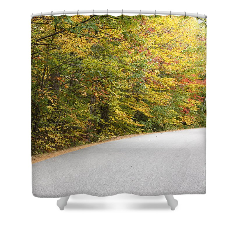 Landscape Shower Curtain featuring the photograph Passaconaway Road - White Mountains New Hampshire Usa by Erin Paul Donovan