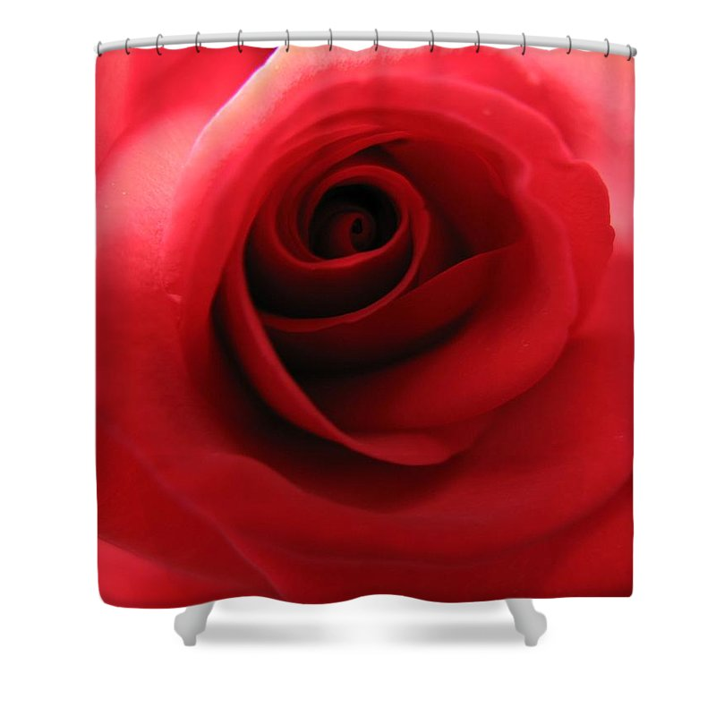 Rose Shower Curtain featuring the photograph Passion by Carol Sweetwood