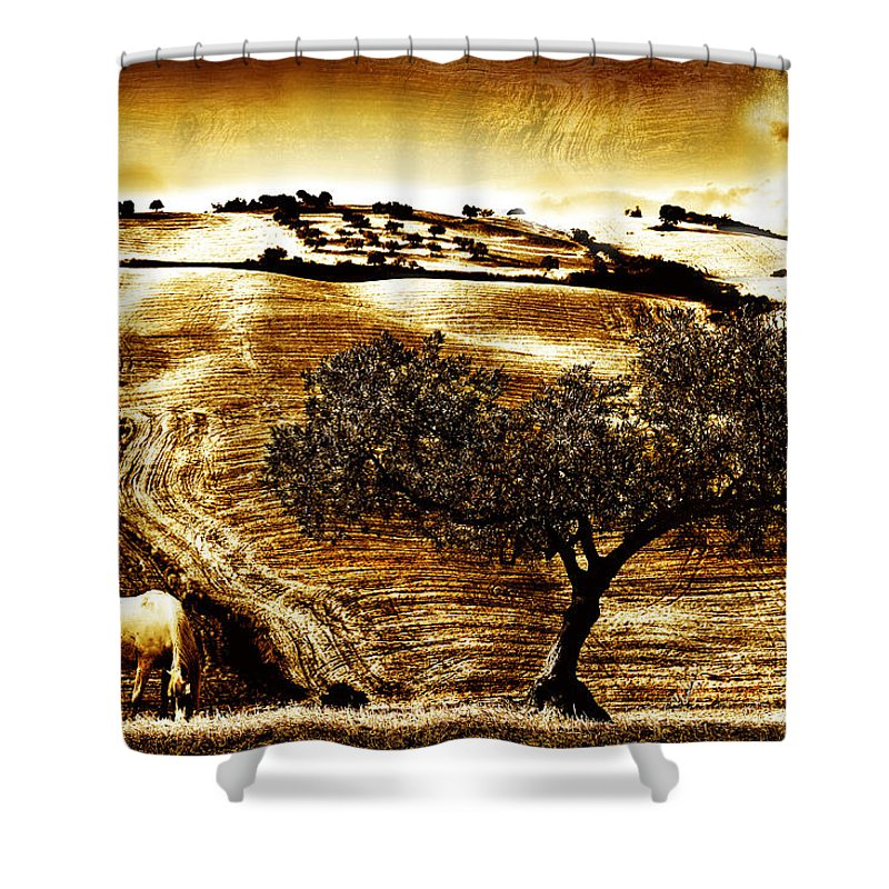 Landscape Shower Curtain featuring the photograph Pastelero Textures by Mal Bray