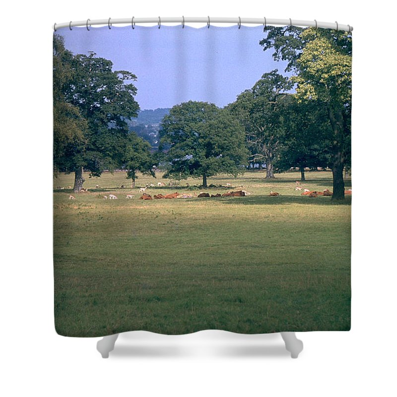 Great Britain Shower Curtain featuring the photograph Pasture by Flavia Westerwelle