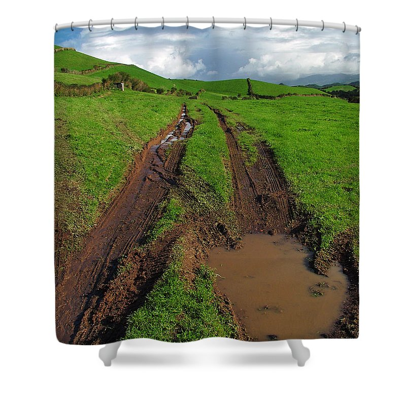 Azores Shower Curtain featuring the photograph Pasture by Gaspar Avila