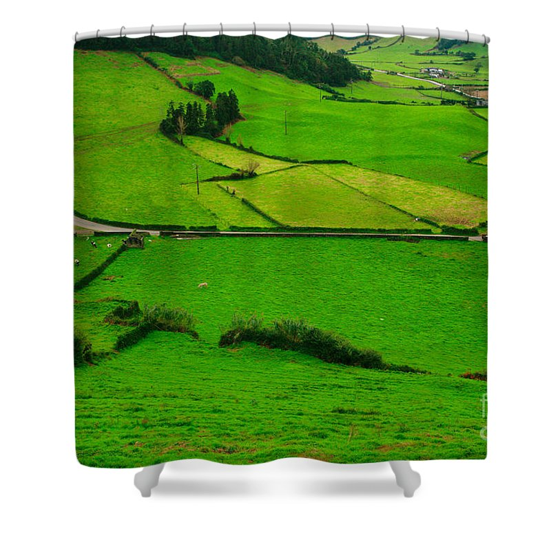 Dairy Shower Curtain featuring the photograph Pastures In The Azores by Gaspar Avila