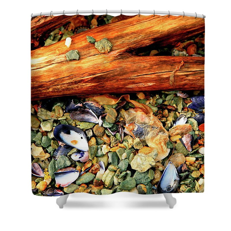 Patagonia Shower Curtain featuring the photograph Patagonian Shore by Bruce J Robinson