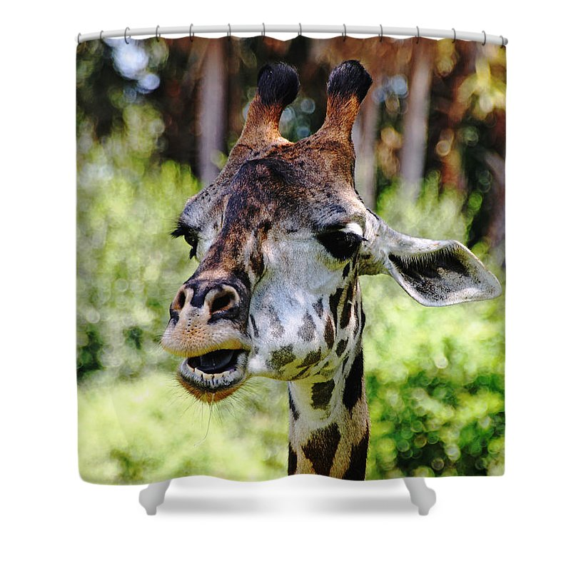 Giraffe Shower Curtain featuring the photograph Patches by Debbie Oppermann
