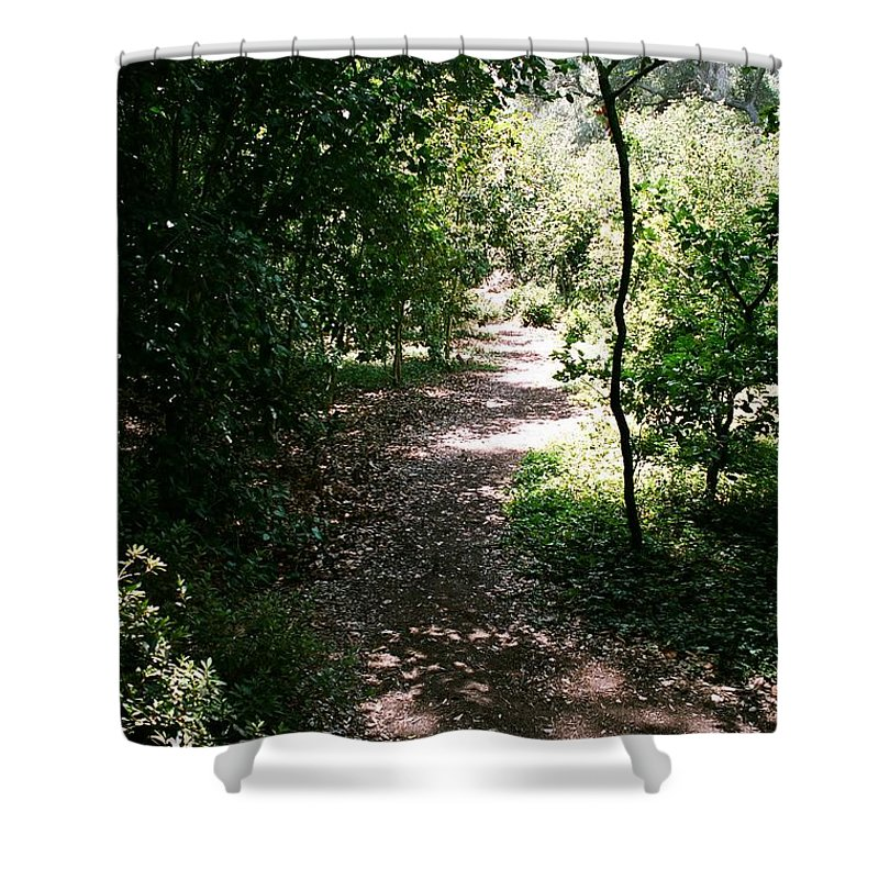 Path Shower Curtain featuring the photograph Path by Dean Triolo