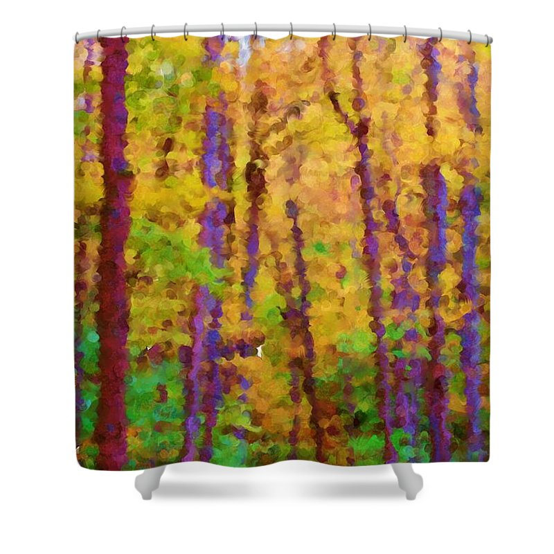 Digital Photograph Shower Curtain featuring the photograph Path In The Woods by David Lane