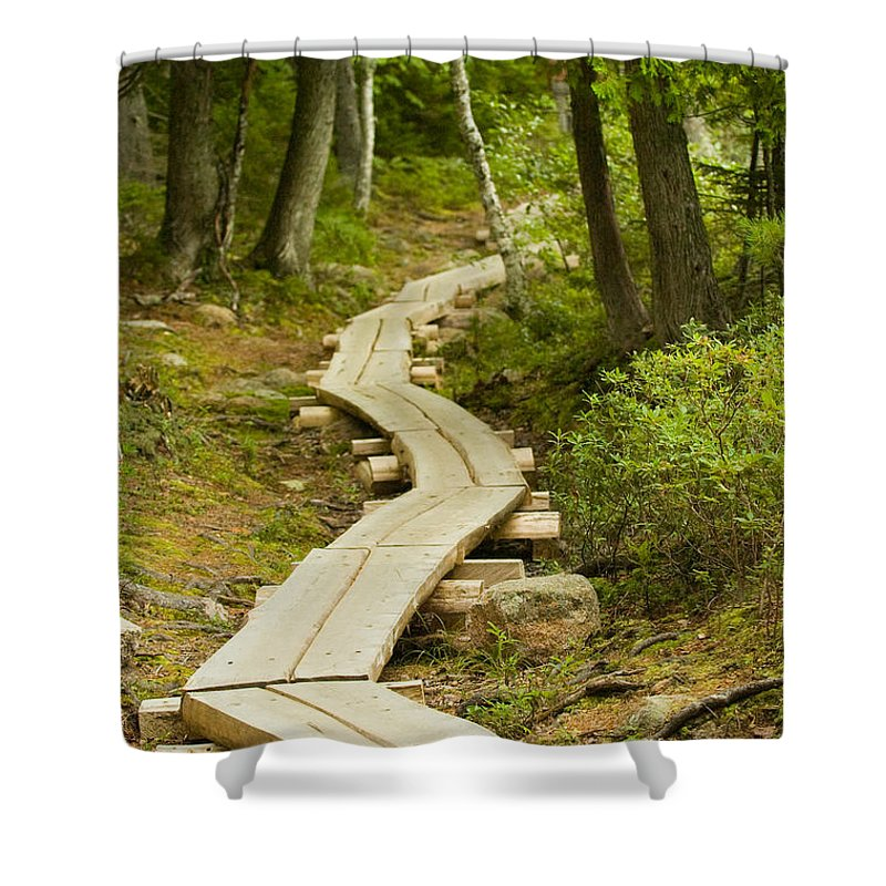 Forest Shower Curtain featuring the photograph Path Into Unknown by Sebastian Musial