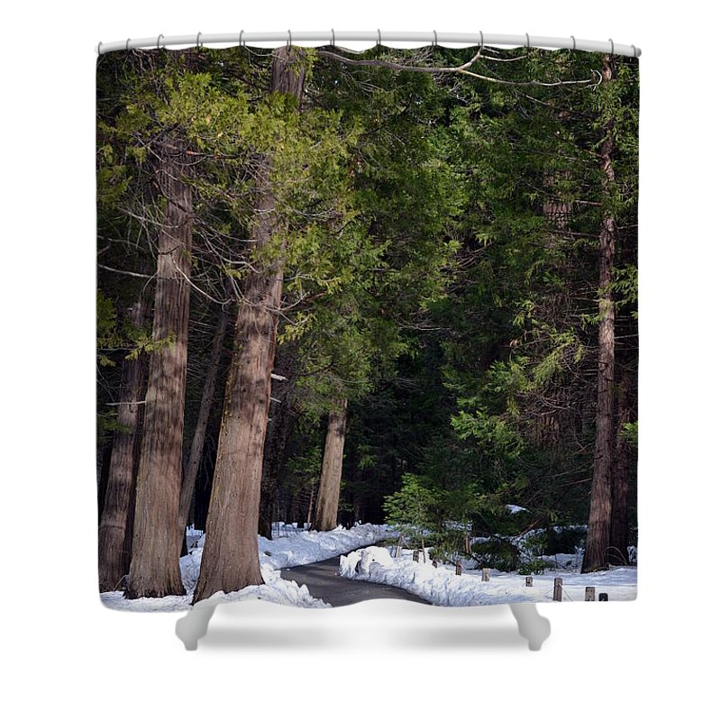 Yosemite Shower Curtain featuring the photograph Path To Paradise by Christine Owens