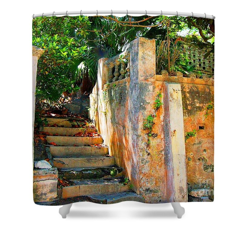 Steps Shower Curtain featuring the photograph Pathway by Debbi Granruth