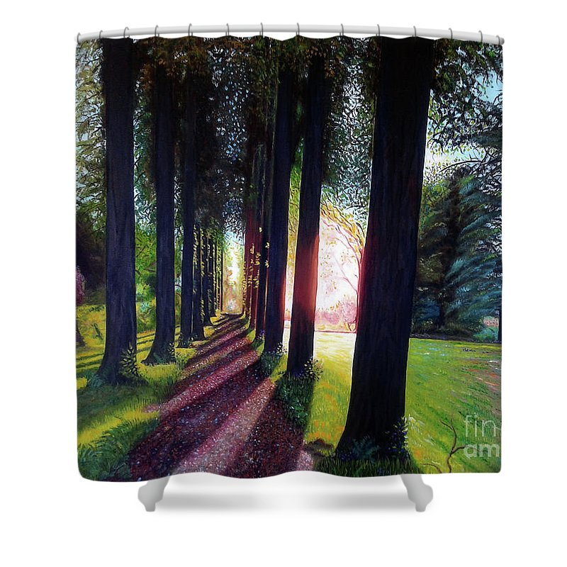 Landscape Shower Curtain featuring the painting Pathy of light by Jose Manuel Abraham