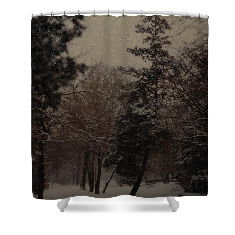Lights Shower Curtain featuring the photograph Peaceful Snow Dusk by Rob Hans
