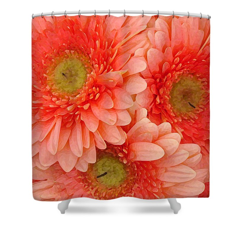 Floral Shower Curtain featuring the painting Peach Gerbers by Amy Vangsgard