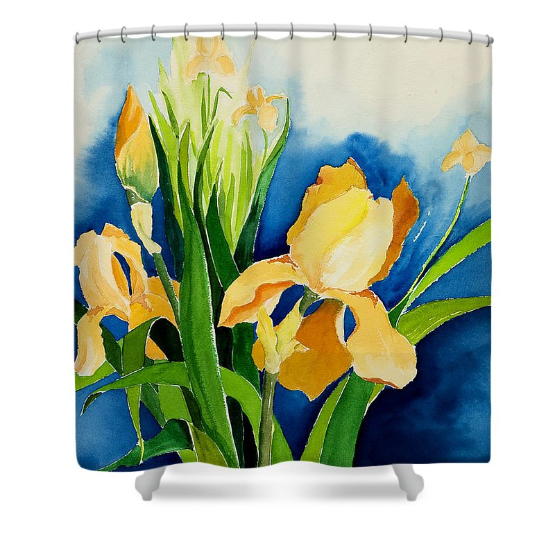 Flower Shower Curtain featuring the painting Peach Irises by Janis Grau