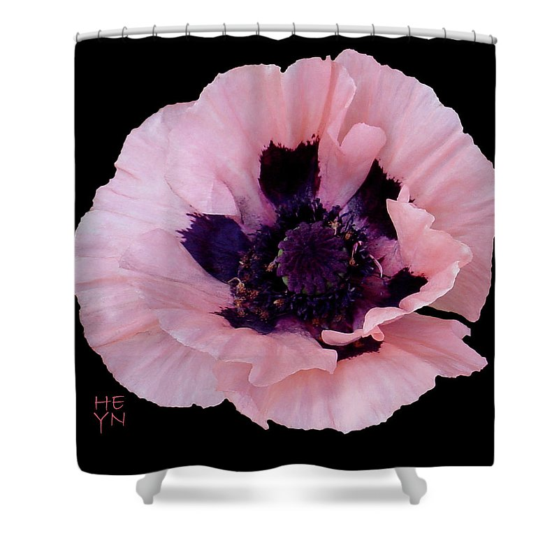 Cutout Shower Curtain featuring the photograph Peach Poppy - Cutout by Shirley Heyn