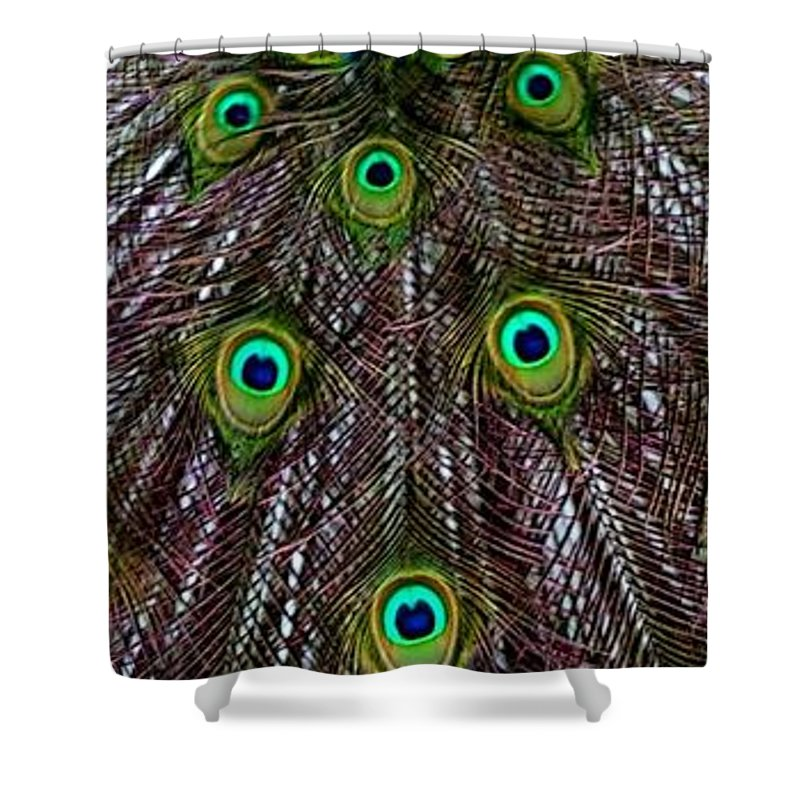 Bird Shower Curtain featuring the photograph Peacock Feathers Upside Down by Valerie Ornstein