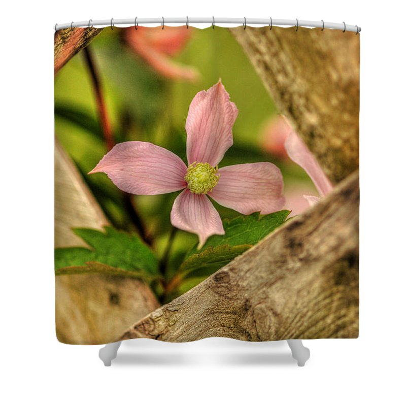 Flower Shower Curtain featuring the photograph Peeking Throuigh by Chris Fleming
