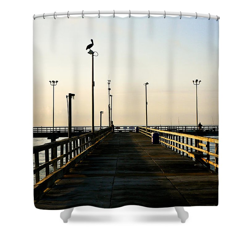 Pelican Shower Curtain featuring the photograph Pelican Morning by Marilyn Hunt