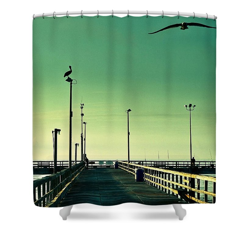 Americana Shower Curtain featuring the photograph Pelican On Watch Duty by Marilyn Hunt