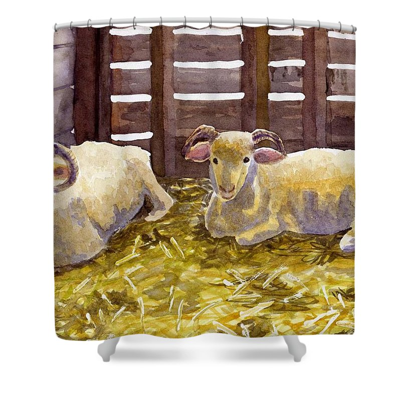 Sheep Shower Curtain featuring the painting Pen Pals by Sharon E Allen