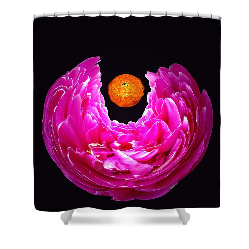 Peony Shower Curtain featuring the photograph Peony Sun by Merja Waters