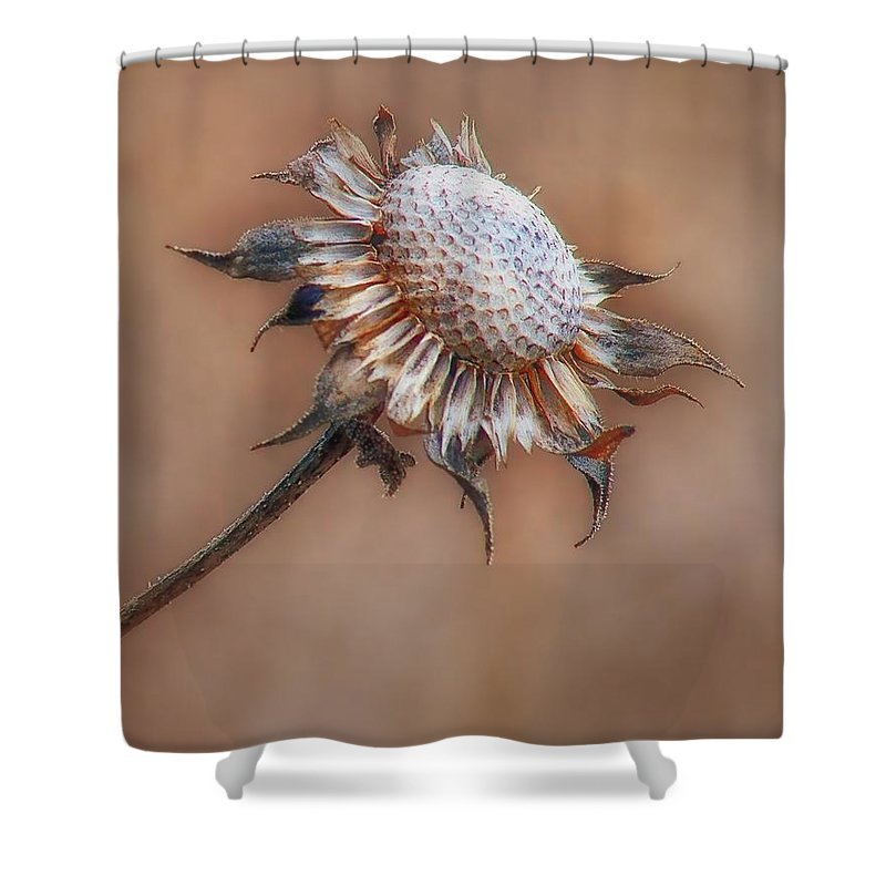 Wildflowers Shower Curtain featuring the photograph Perfect Imperfection by Nikolyn McDonald