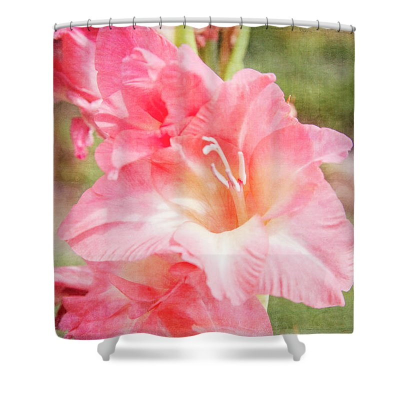 Flower Portrait Shower Curtain featuring the photograph Perfect Pink Canna Lily by Toni Hopper