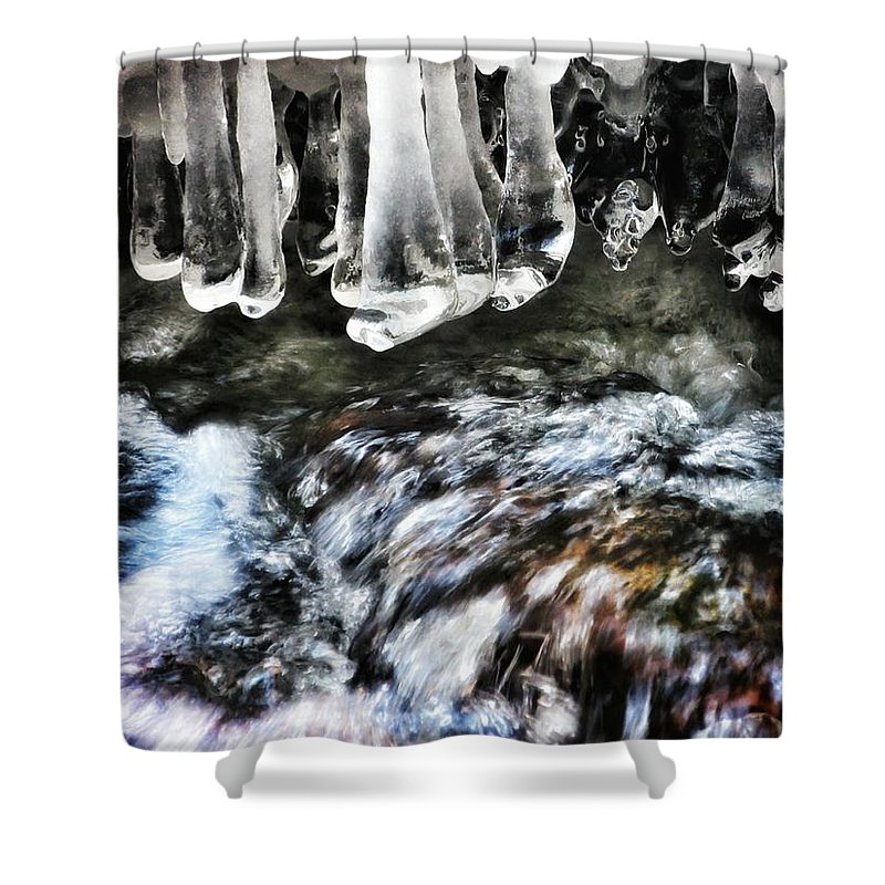 Fanny Hooe Shower Curtain featuring the photograph Perfectly Balanced by Scott Wendt Tom Wierciak