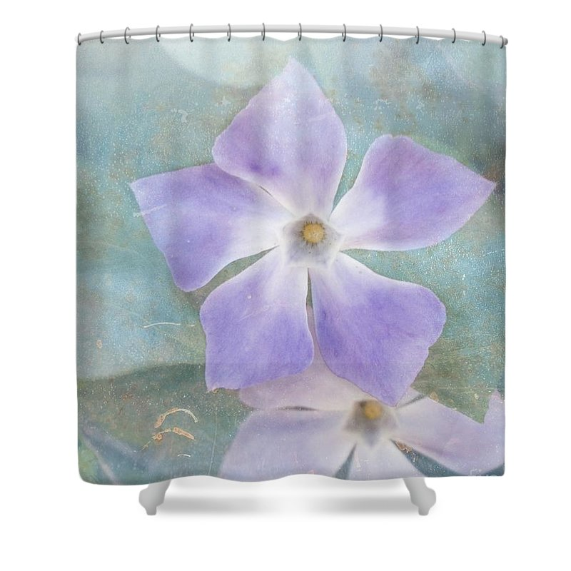 Periwinkle Shower Curtain featuring the photograph Periwinkle Stars by Cindy Garber Iverson