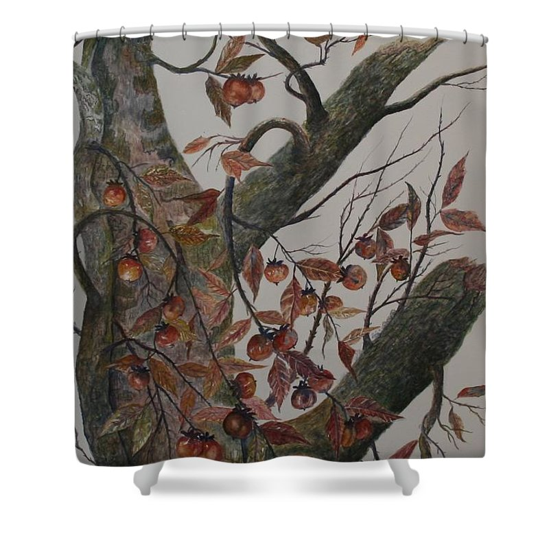 Persimmons; Tree; Landscape' Carolina Wren; Bird Shower Curtain featuring the painting Persimmon Tree by Ben Kiger