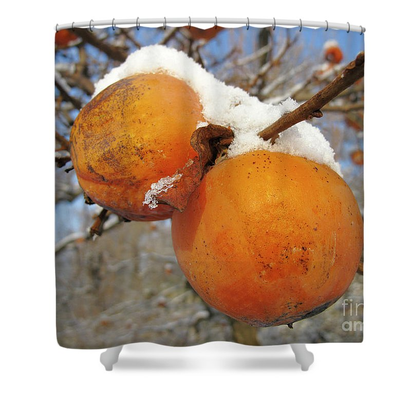 Horizontal Shower Curtain featuring the photograph Persimmon Tree by Stefania Levi