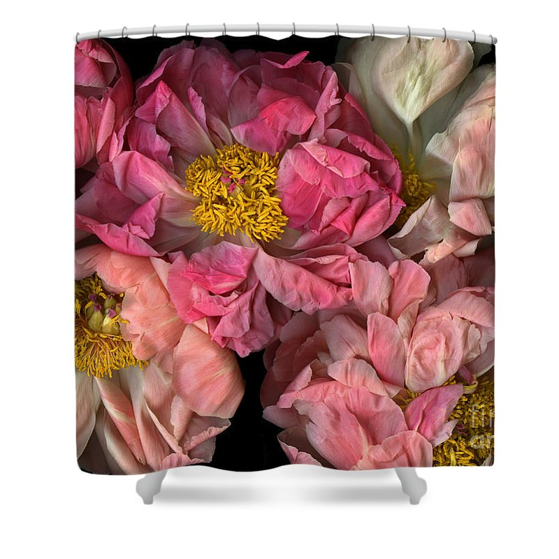 Cslanec Shower Curtain featuring the photograph Petticoats by Christian Slanec