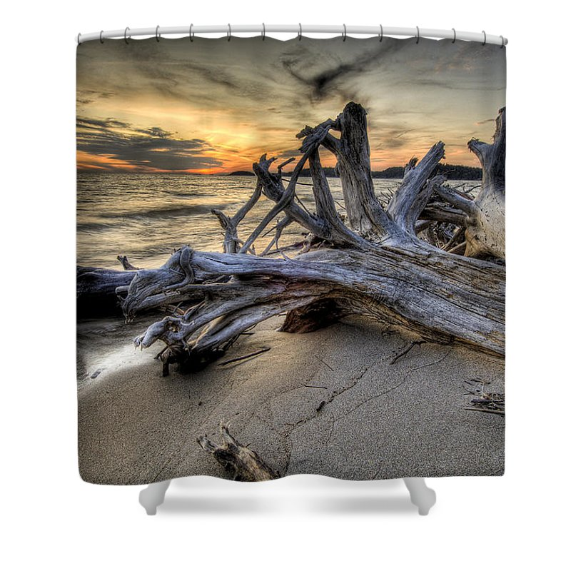 Lake Superior Shower Curtain featuring the photograph Pic Driftwood by Doug Gibbons