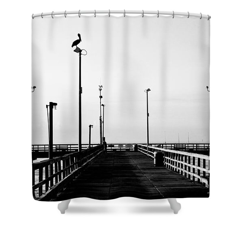 Bird Shower Curtain featuring the photograph Pier And Pelican by Marilyn Hunt