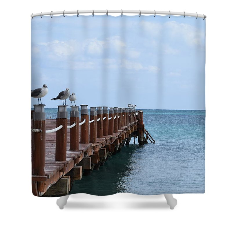 Birds Shower Curtain featuring the photograph Piers By The Ocean2 by Christina McNee-Geiger