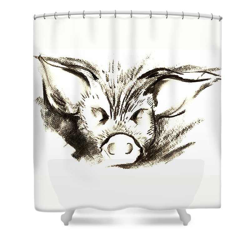Animal Welfare Shower Curtain featuring the drawing Pig Headed by Mark Cawood