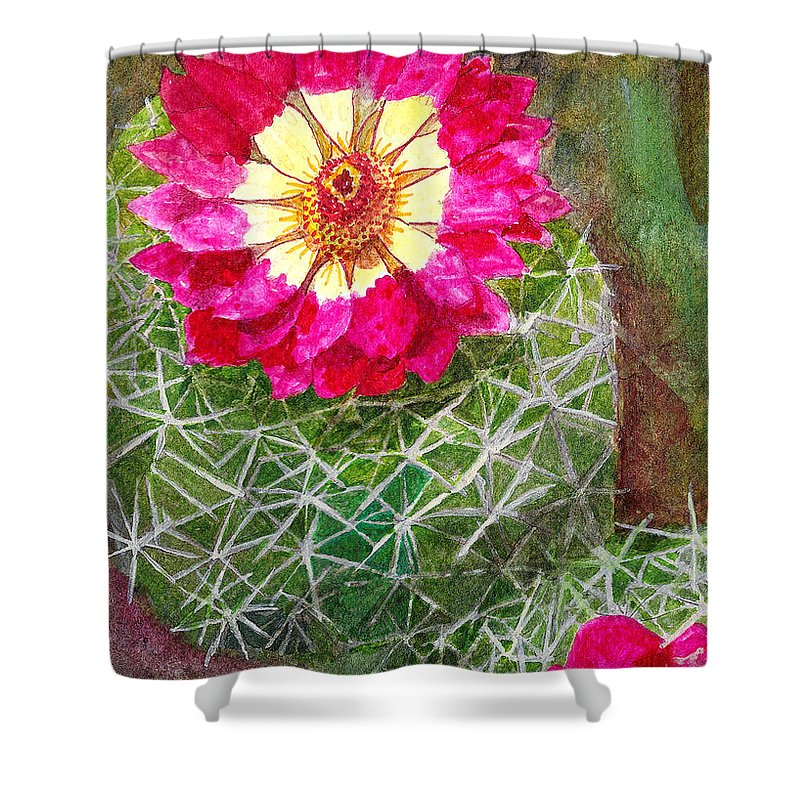 Cactus Shower Curtain featuring the painting Pincushion Cactus by Eric Samuelson