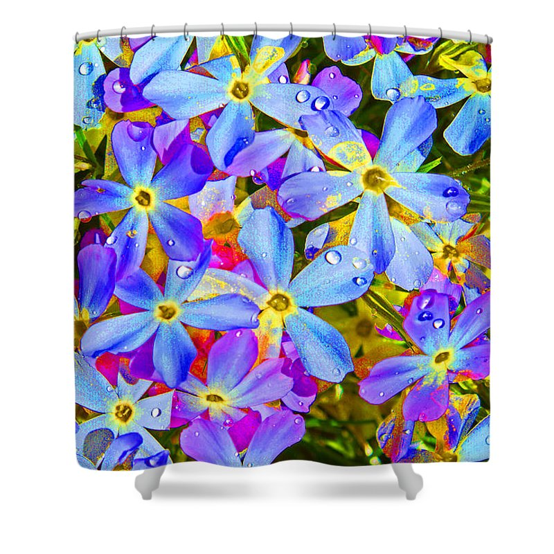 Wildflower Shower Curtain featuring the photograph Pincushion Flower by Heather Coen