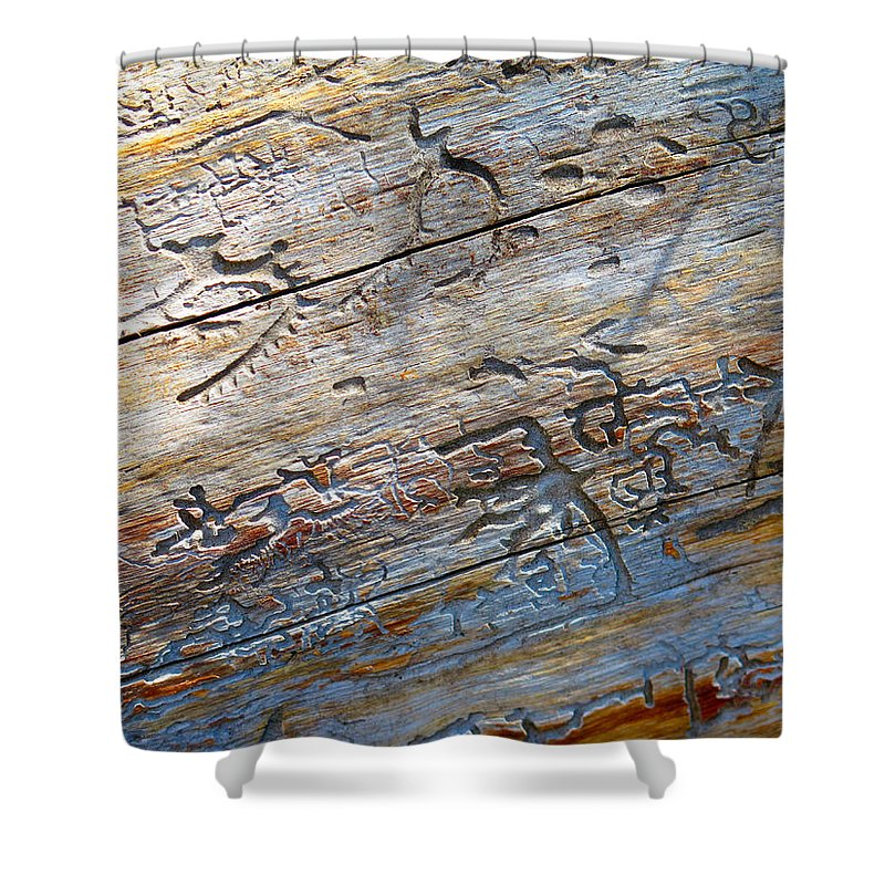 Tree Shower Curtain featuring the photograph Pine Beetle Etchings by Alanna Morris