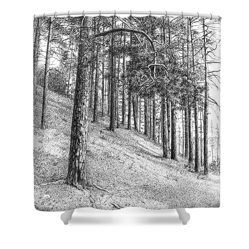 Ink Drawing Shower Curtain featuring the drawing Pine Branch by Alexander Potekhin