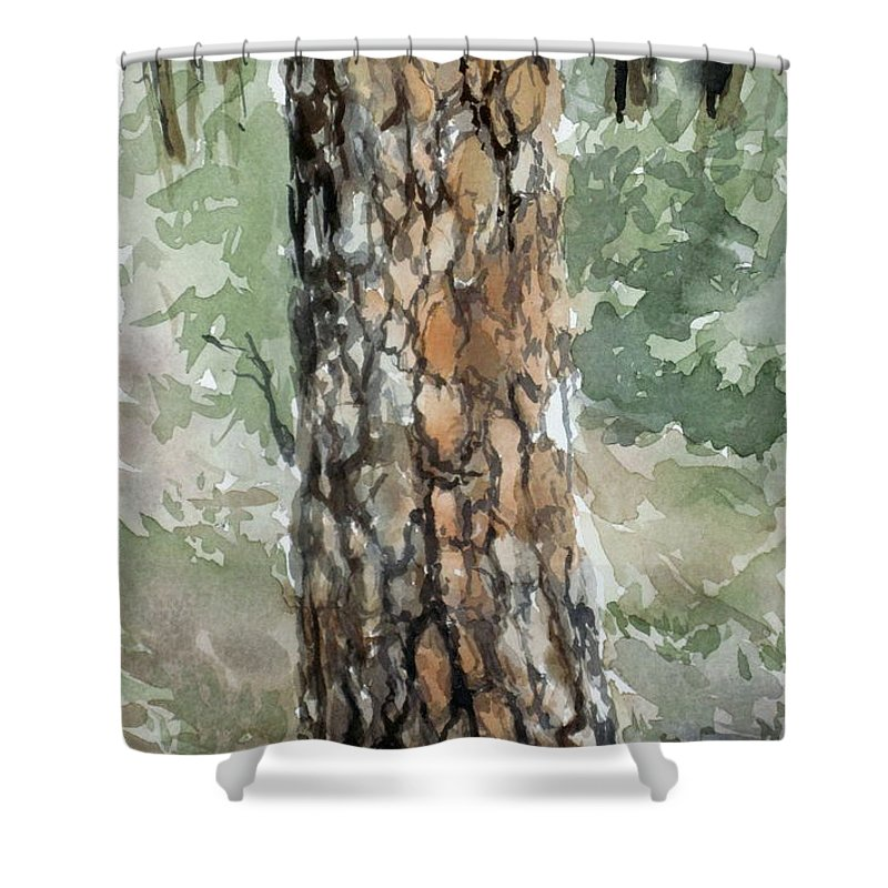 Tree Shower Curtain featuring the painting Pine Tree by Karen Boudreaux
