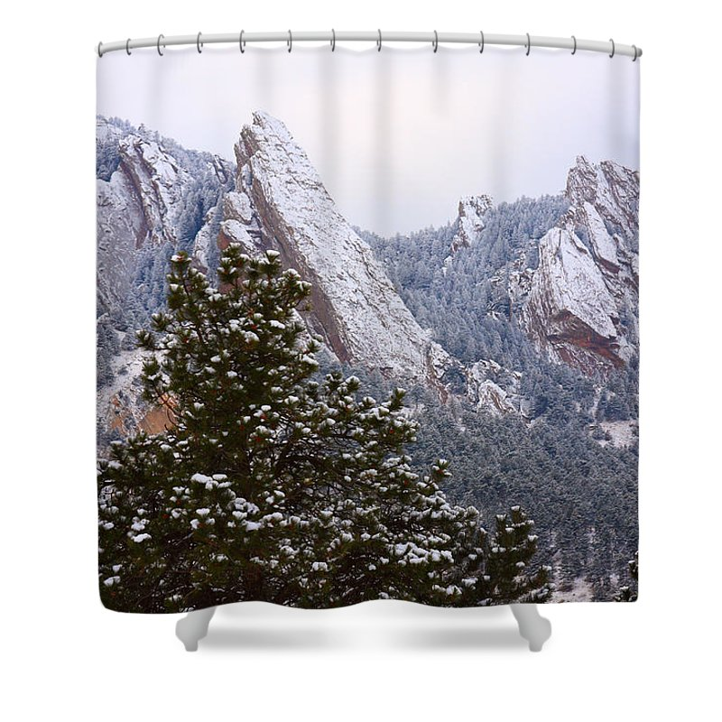 Flatirons Shower Curtain featuring the photograph Pines And Flatirons Boulder Colorado by James BO Insogna