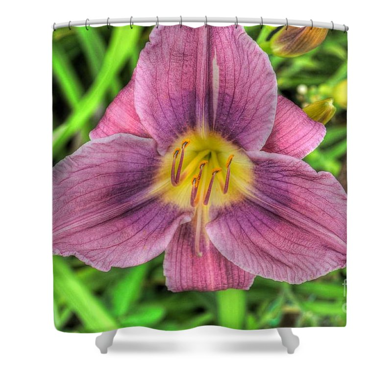Lilly Shower Curtain featuring the photograph Pink And Green by Chris Fleming