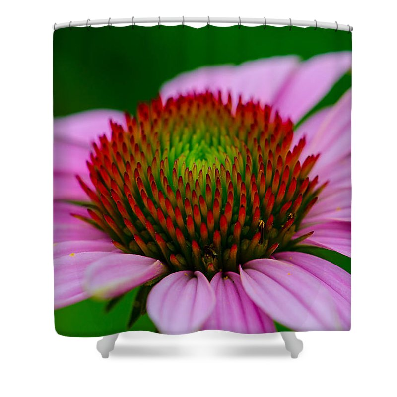 Flower Shower Curtain featuring the photograph Pink And Red by Linda Howes